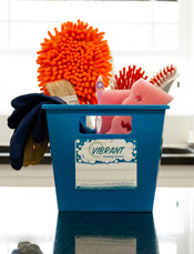 Vibrant Cleaning Kit